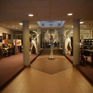 Galéria Velvet